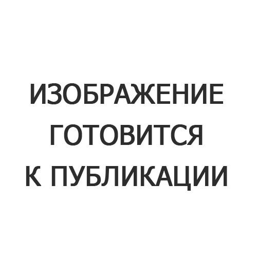 Гравюра малая Золото «Волк»