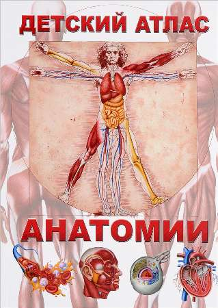 Книга.Детский атлас анатомии