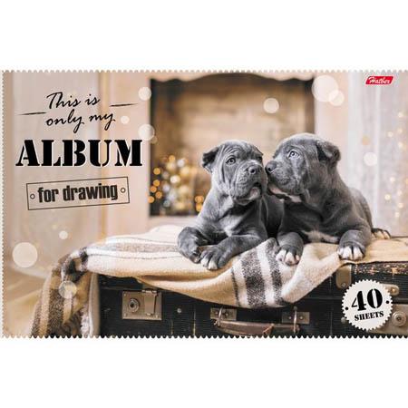 Альбом д/рис 40л «Ассорти»