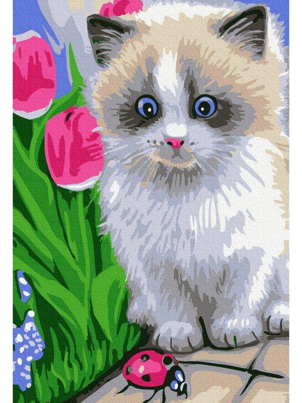 Картина по номерам 20х30см Маленький котенок (15 цветов)