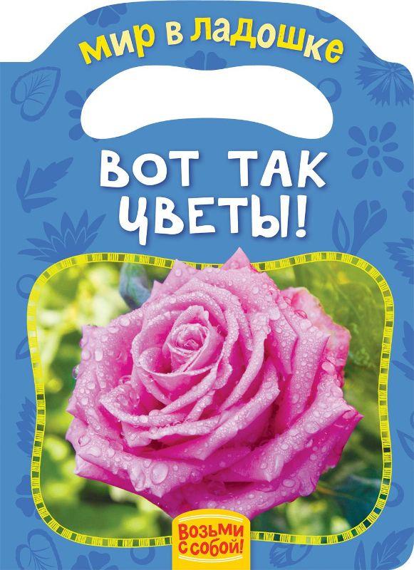 Книга. Мир в ладошке. Вот так цветы!