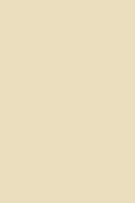 Лист FOM EVA 42х62см Бежевый (телесный) 1мм