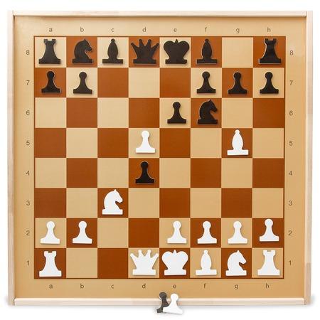 Шахматы демонстрационные магнитные