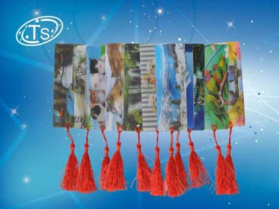 Закладка Пластиков 3D 15х6см АССОРТИ