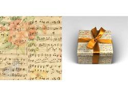 Упаковочная бумага 70х100см 90г/м2 Музыка (1 лист в рулоне)
